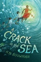 A Crack in the Sea by H. M. Bouwman